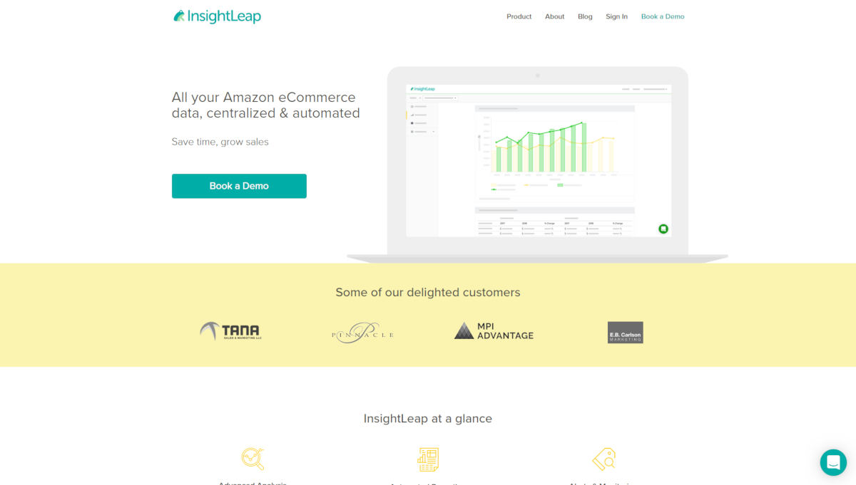 InsightLeap landing page screenshot